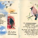 Vogelwelt_09-10_VB